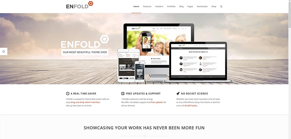 enfold-wordpress-template