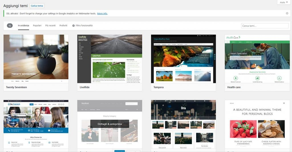 temi-wordpress-template